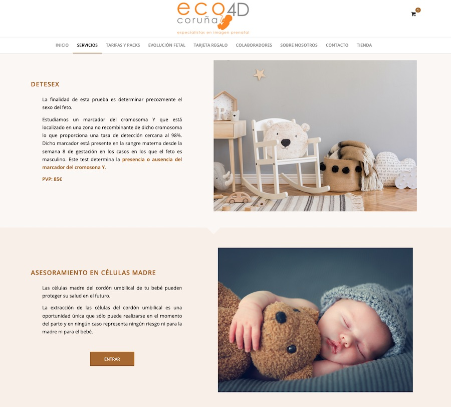 Diseño Web Madrid | Mantenimiento Tienda Online Madrid | SEO Tienda Online